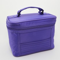 Purple Carry Case