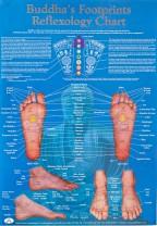 buddhas-reflexology-chart