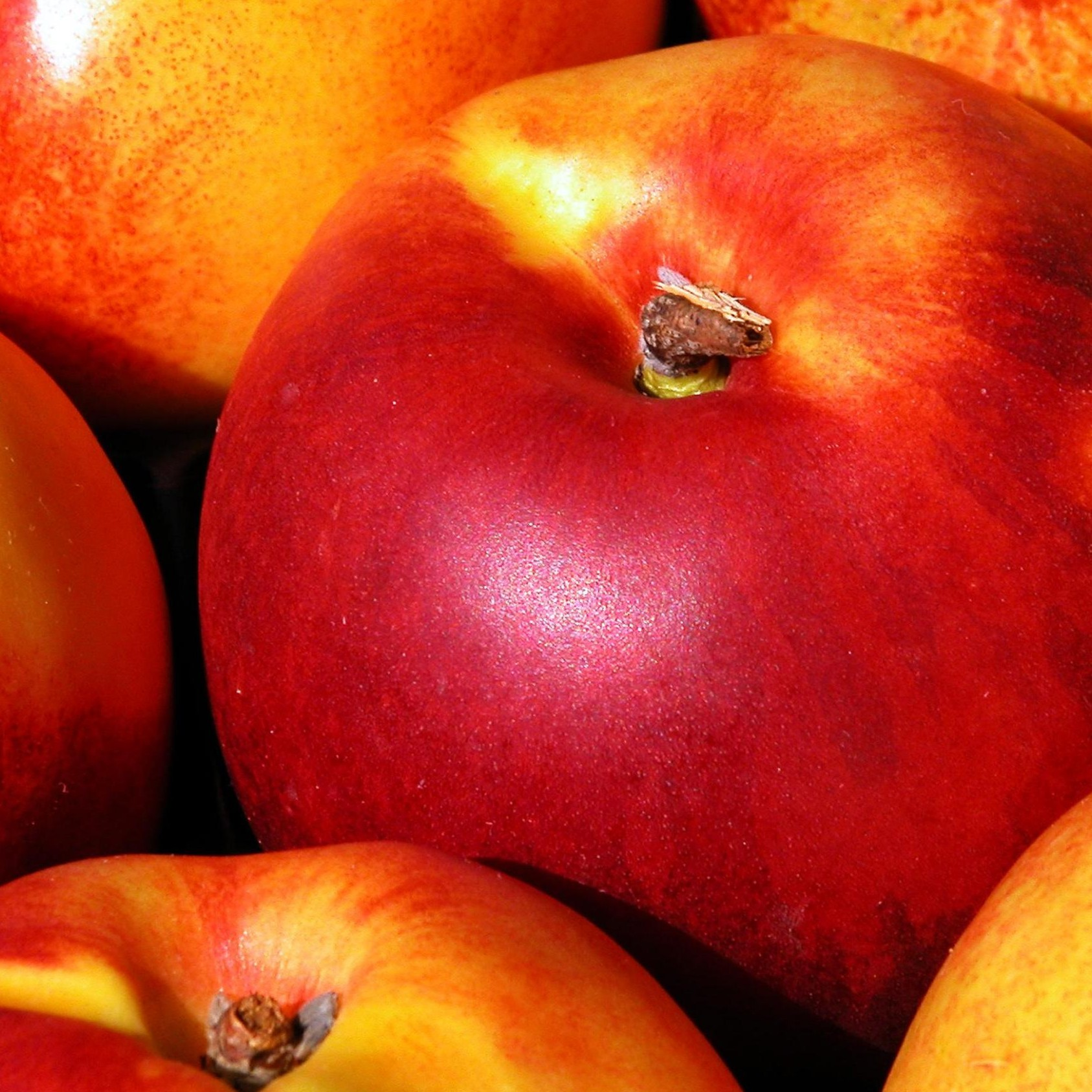 Peach and Apricot Fragrance Oil