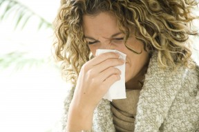 Cold & Flu for Blog