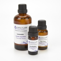 Essential Oils for Blog